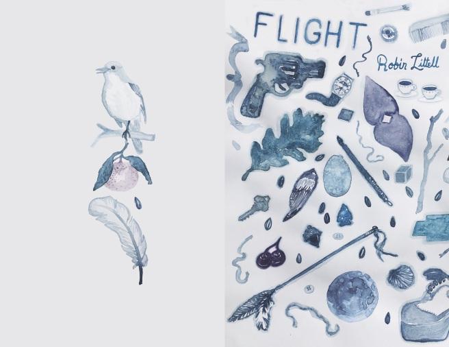 RobinLittellFlight3